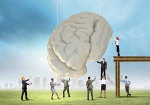 hoe werken onze hersenen